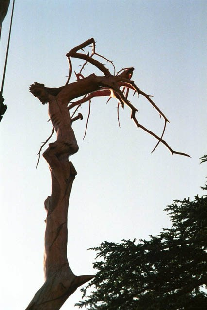 The Carved and Shaped Cedar - appears in the shape of the Crucifixion.