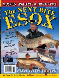 Front Cover of The Next Bite