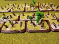 Infantry close-up